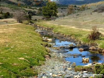 Hayedo Tejera Negra; rutas alto tajo valle de aran senderismo agencias de viajes de aventura rutas y
